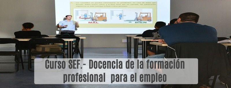 Curso SEF- Docencia de la formación profesional para el empleo