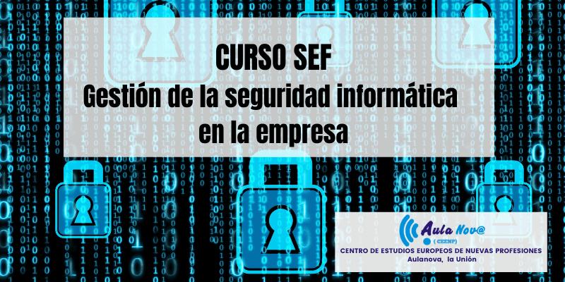 Curso SEF.- gestión de la seguridad informática en la empresa